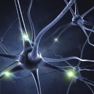 Neurology Picture (Small)